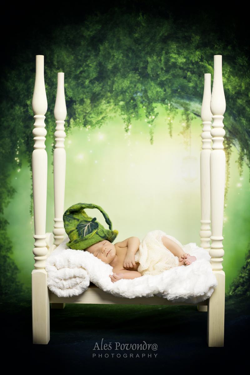 newborn foto miminek