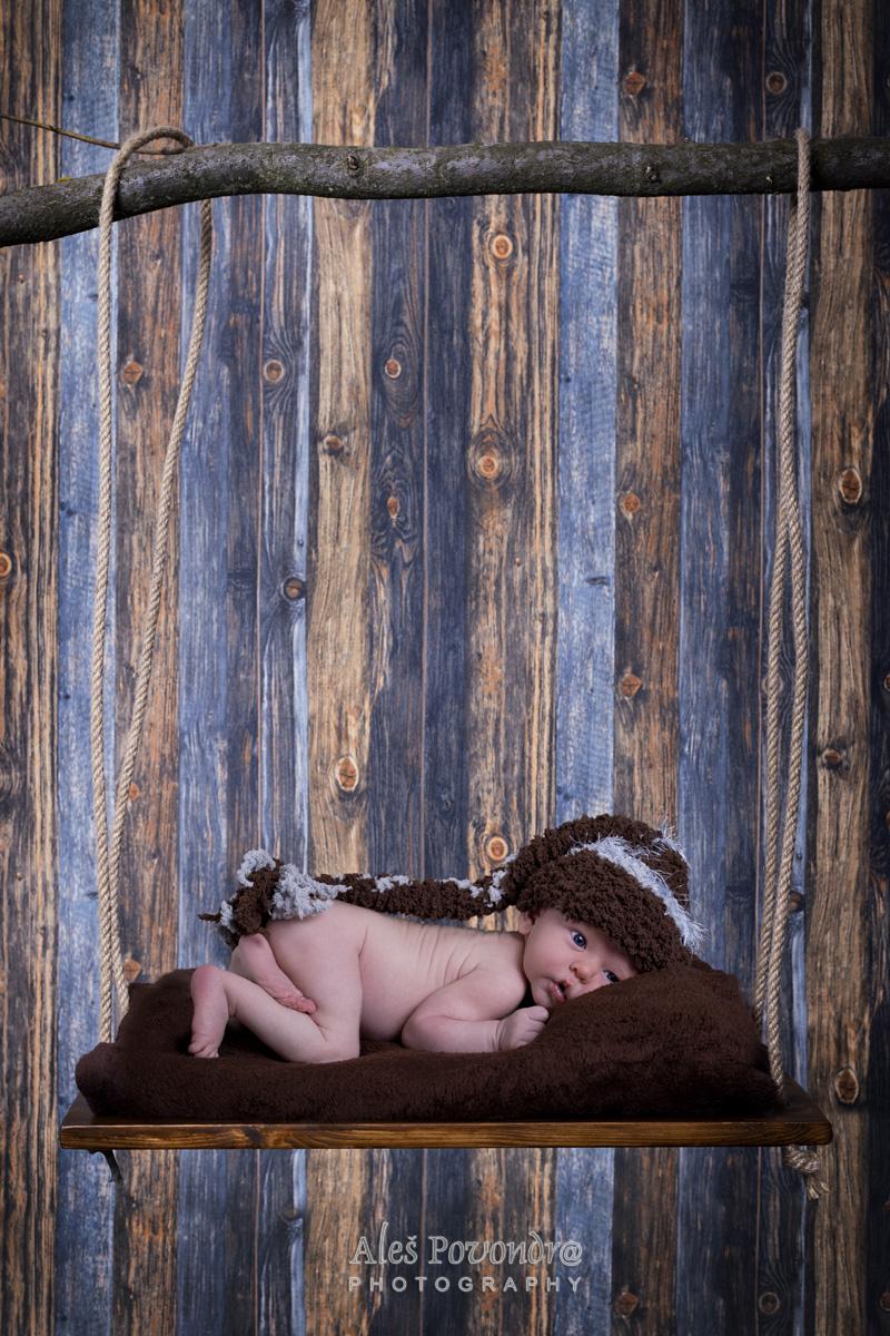 newborn foto novorozenců