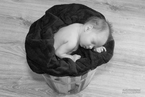 galerie rozcestník / novorozenecké foto