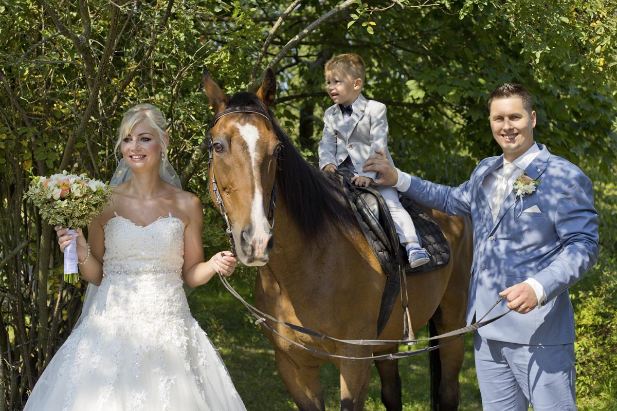 portrét s koněm
