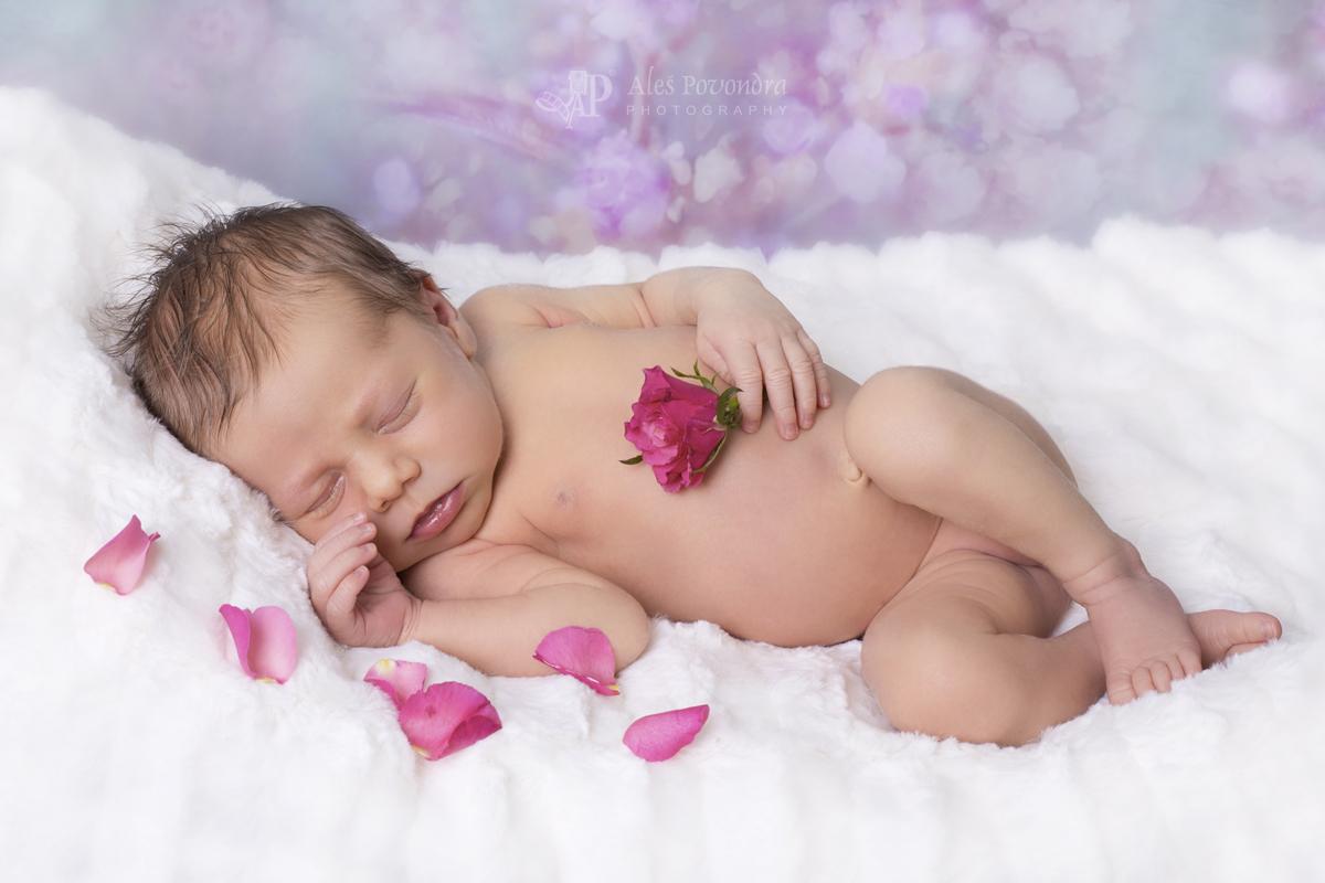foto novorozenců