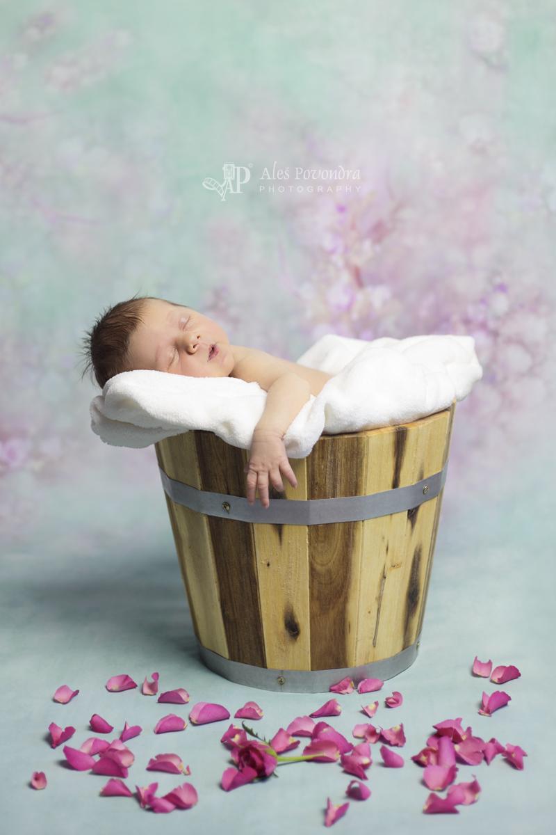 Novorozenecké foto