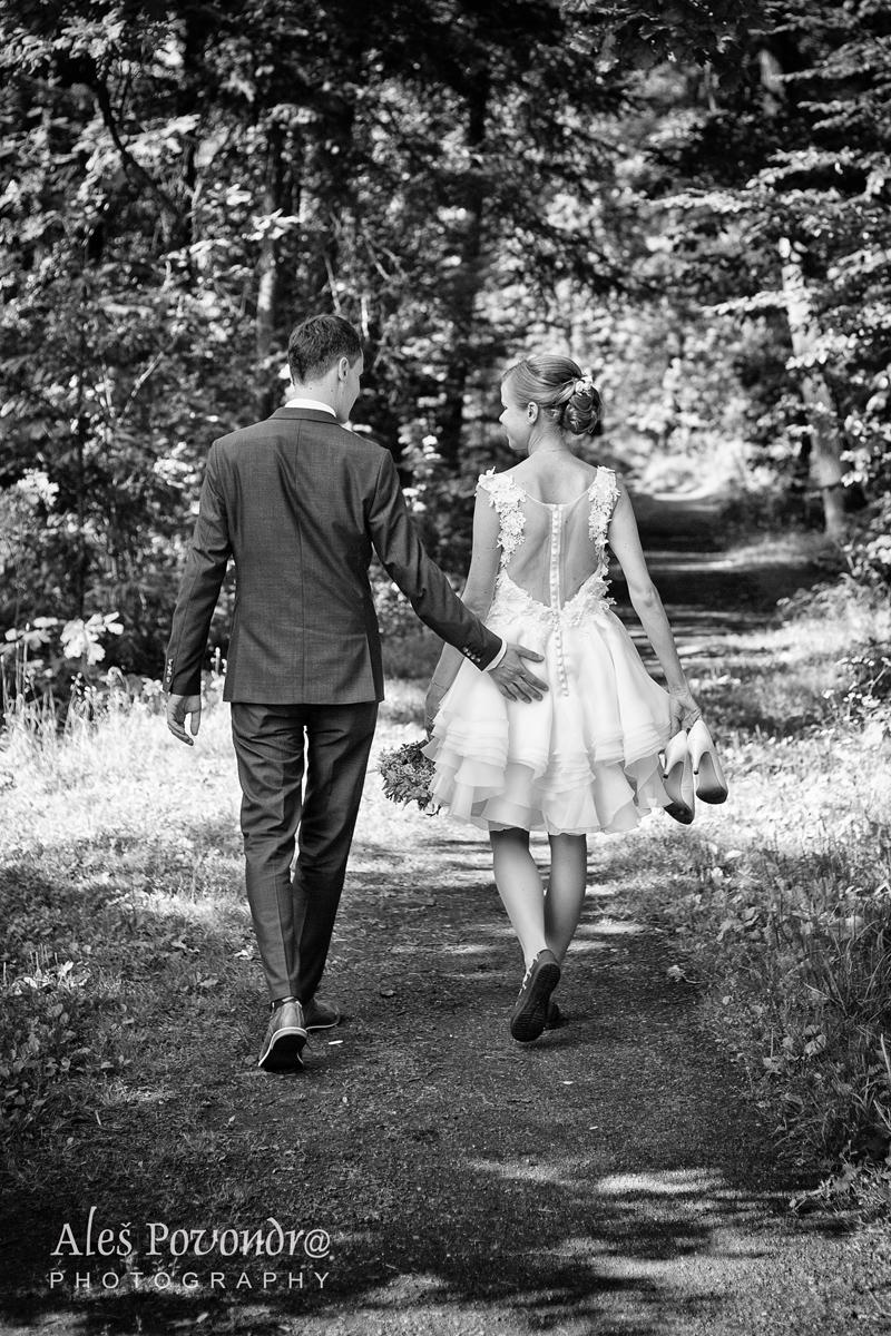 svatební cesta foto